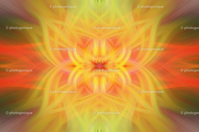 twirl-kokardenblumen