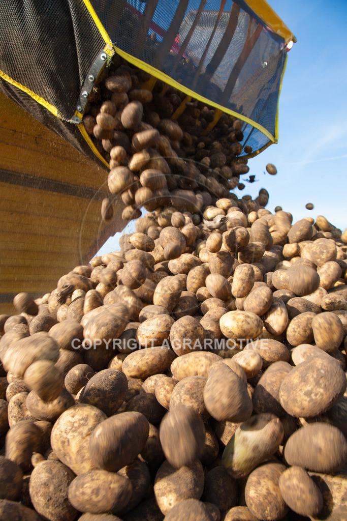 20110929-IMG_5982 | Ernte auf einem Kartoffelfeld