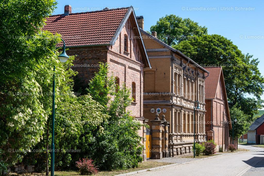10049-11007 - Dedeleben _ Gemeinde Huy | max. Auflösung 7360 x 4912