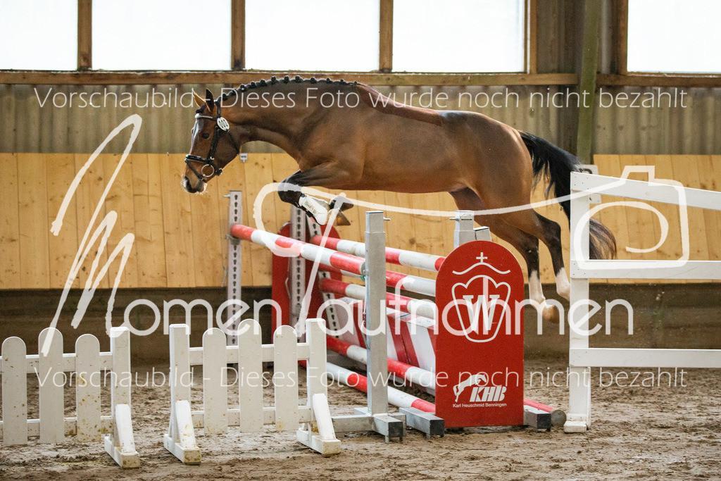 Freispringen-Pony-3j-19