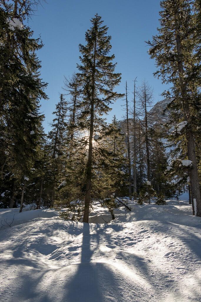 Schöner Wintermorgen in Südtirol