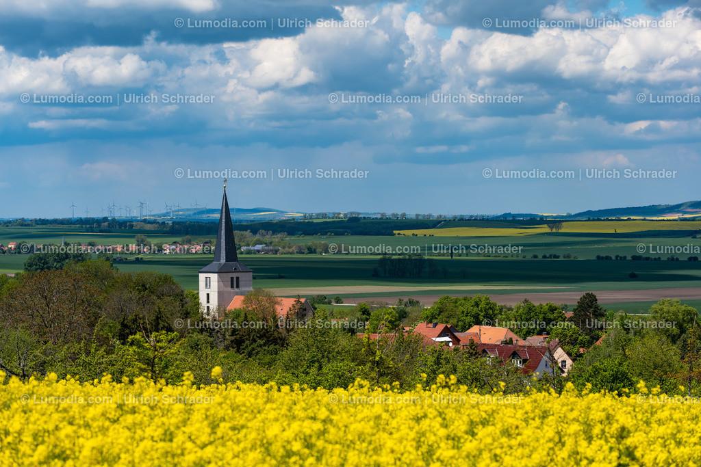 10049-12161 - Blick auf Eilenstedt