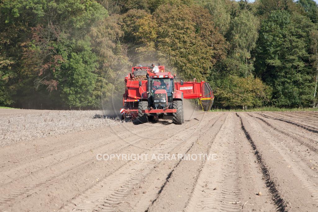 20110929-IMG_5893 | Ernte auf einem Kartoffelfeld - AGRARBILDER