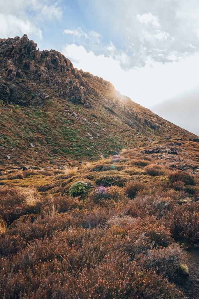 Aufstieg zum Gipfel des Tongariro    Aufstieg zum Gipfel des Tongariro