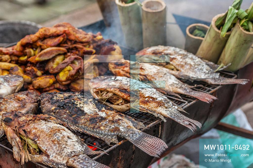 MW1011-8492   China - Thailand   Thailand   Provinz Chiang Rai   Chiang Saen   Schiffsreise mit dem Cargoboot von Guan Lei nach Chiang Saen auf dem Mekong   Gegrillte Fische auf dem Nachtmarkt in Chiang Saen im Goldenen Dreieck  ** Feindaten bitte anfragen bei Mario Weigt Photography, info@asia-stories.com **