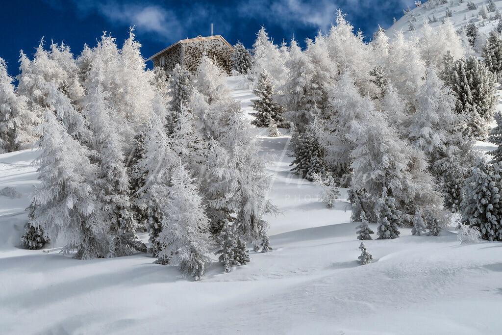 Patscherkofel | Winter am Patscherkofel