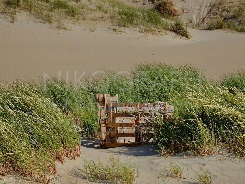 Strandgut | Paletten in den Dünen von Texel. Aus dem Strandgut machen die Insulaner häufig interessante Kunstwerke.