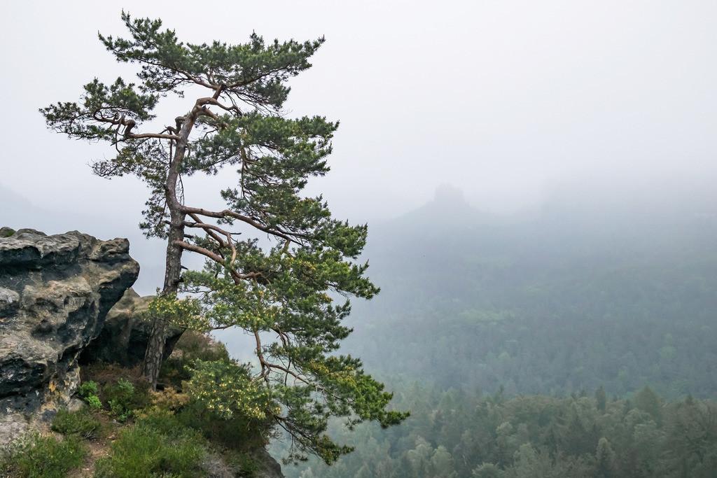 Gleitmannshorn, Sächsische Schweiz | Die Serie 'Deutschlands Landschaften' zeigt die schönsten und wildesten deutschen Landschaften.