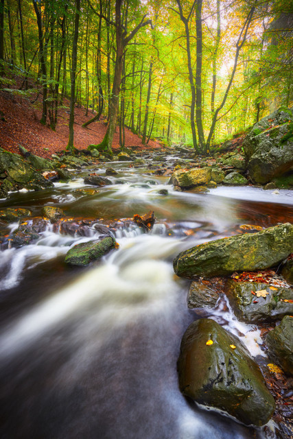 Im Tal der Hoëgne | Es ist ein Juwel, das da am Ostrand der belgischen Ardennen schimmert: das Tal der Hoëgne. Im Herbst treten sich zumindest am unteren Flusslauf die Fotografen schonmal auf die Füße. Verständlich, denn der flotte Wildbach bietet besonders im Herbst wunderschöne Motive. Eine Landschaft zum Träumen.