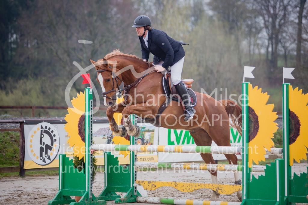 190404_Frühlingsfest_Sprpf-A-133   Frühlingsfest Herford 2019 Springpferdeprüfung Klasse A**