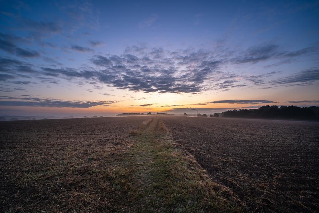 Sonnenaufgang über den Feldern am Obersee | Sonnenaufgang über den Feldern am Obersee im Herbst.