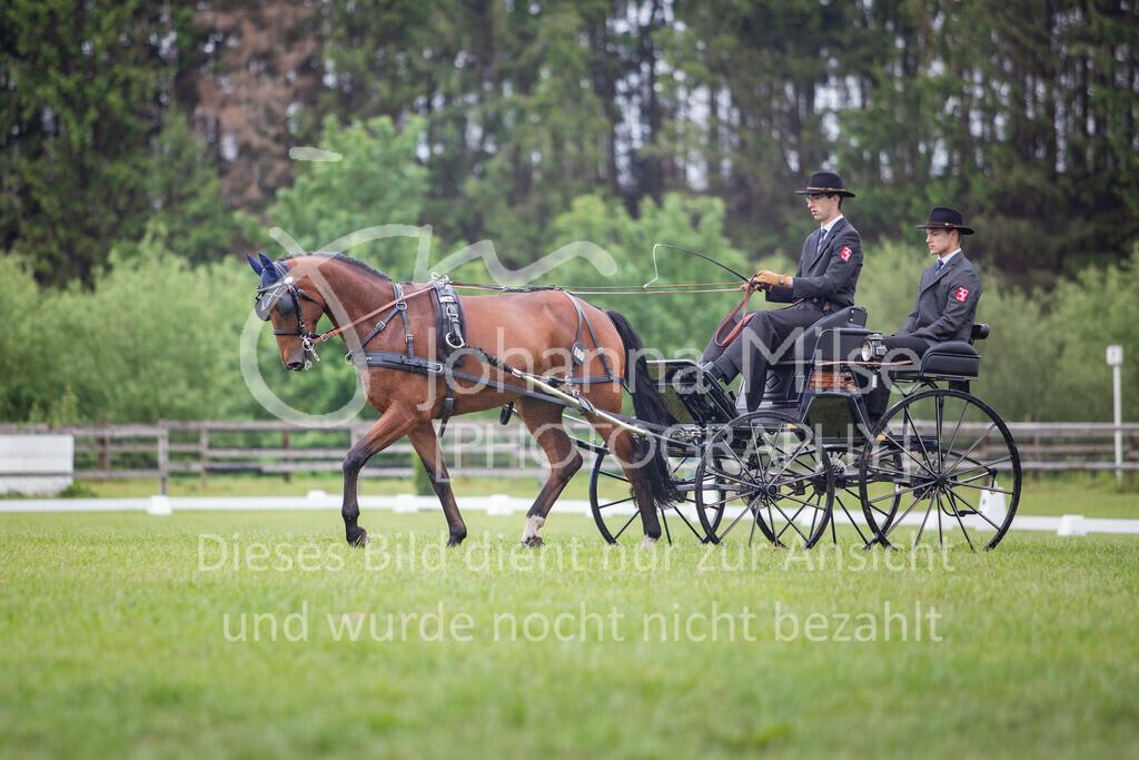 190525_Fahren-001 | Pferdesporttage Herford 2019 Fahren