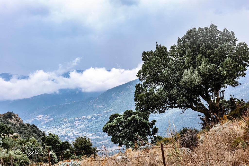 Sardiniens Nordwesten | Ein Paradies für Radsportler