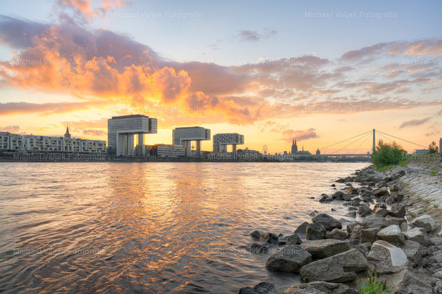 Sommerabend in Köln am Rhein   Blick vom Rheinufer an den Poller Wiesen in Richtung Kölner Skyline mit den Kranhäusern und dem Kölner Dom als markanteste Wahrzeichen.