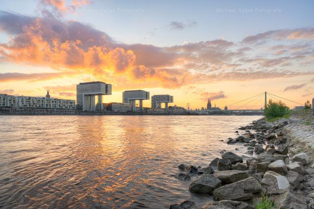 Sommerabend in Köln am Rhein | Blick vom Rheinufer an den Poller Wiesen in Richtung Kölner Skyline mit den Kranhäusern und dem Kölner Dom als markanteste Wahrzeichen.