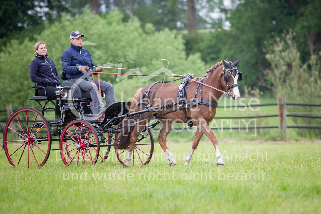 190525_Fahren-017 | Pferdesporttage Herford 2019 Fahren