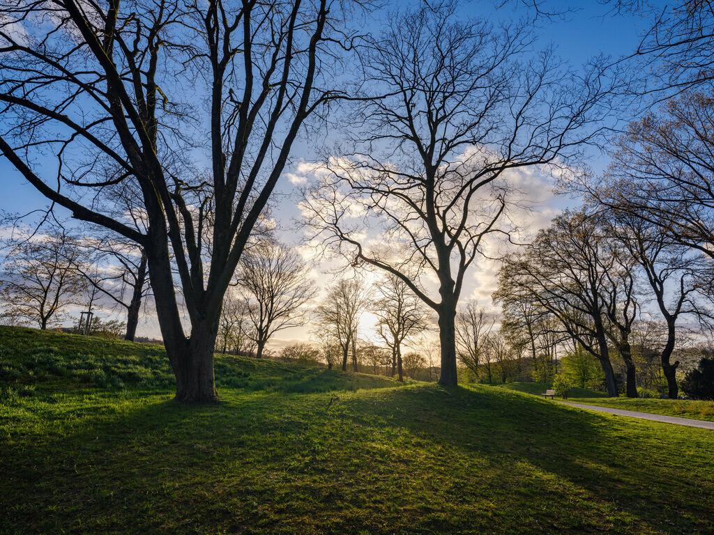 Park auf dem Johannisberg | Park auf dem Johannisberg an einem Abend im April.