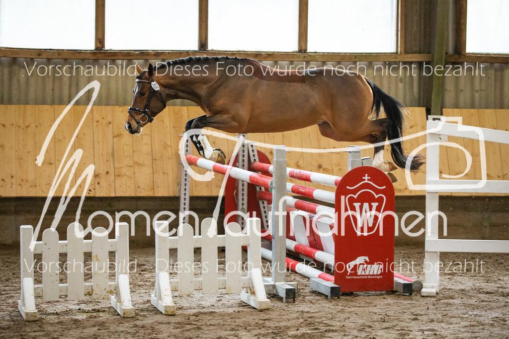 Freispringen-Pony-3j-21
