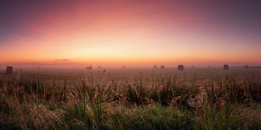 Morgens in den Hammewiesen | Hammewiesen-Panorama frühmorgens aufgenommen.