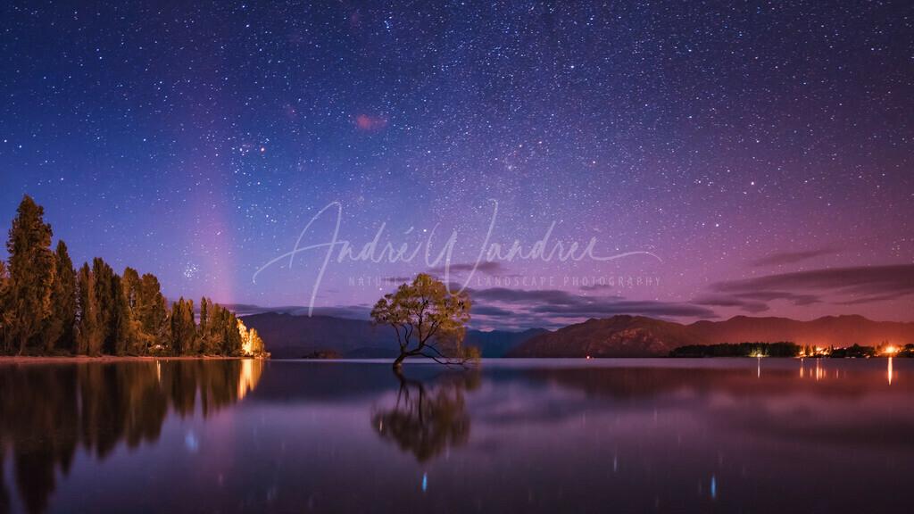 Sterne über Wanaka