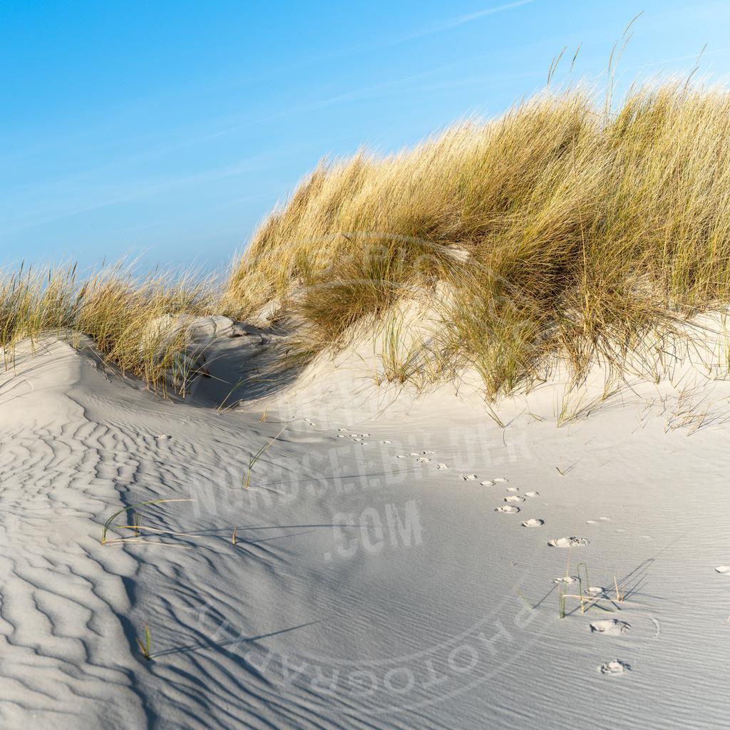 DSC4564-Pano | Deine Spuren im Sand