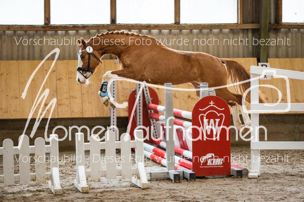 Freispringen-Pony-3j-34