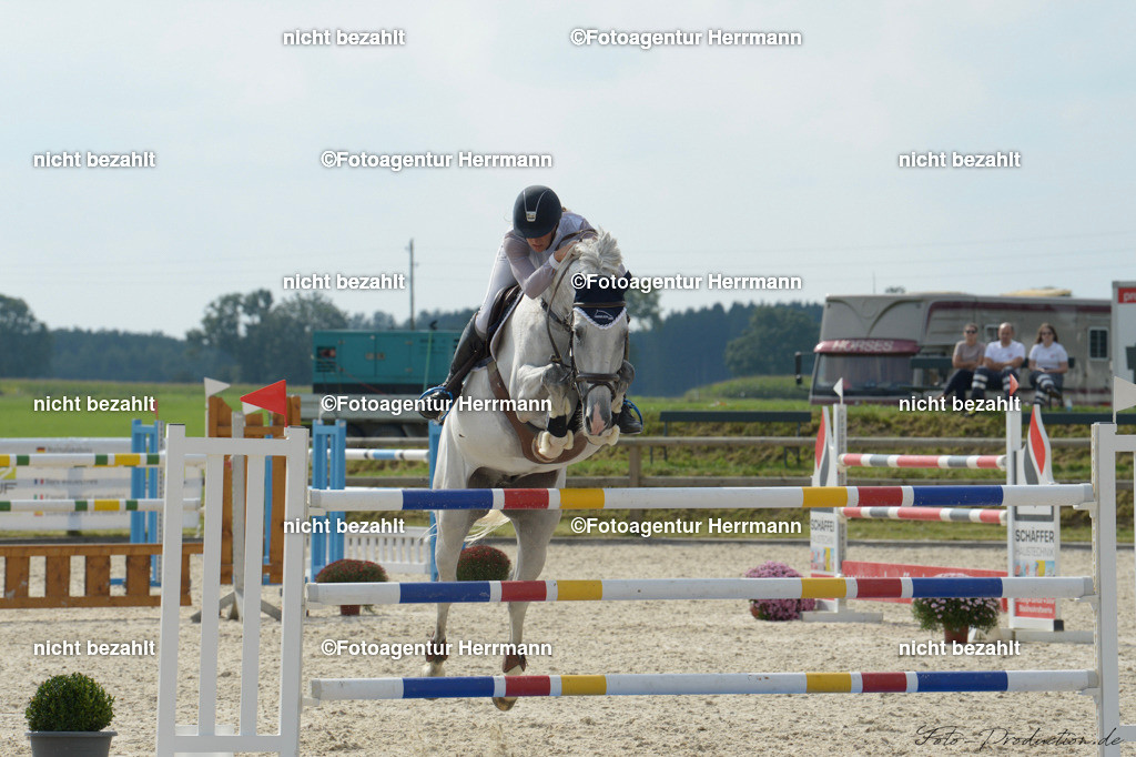 20190914-ND4_6427 | Horse Gym´s Landino, 2019, Honsolgen