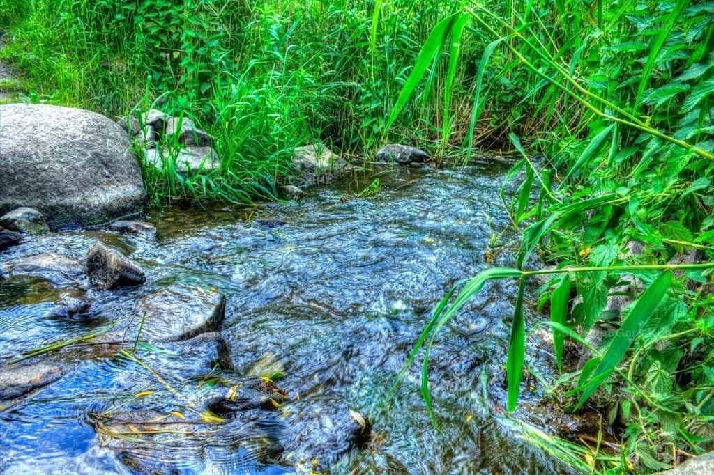 Stream Wuhle . Fluß Wuhle