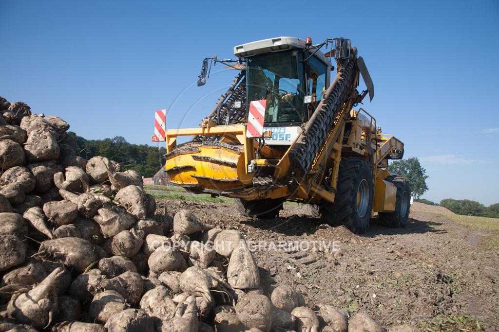 20120916-_MG_9075   Rübenroder bei der Ernte - AGRARFOTO
