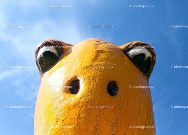 Gelber Dino guckt von oben | Gelber Dinosaurier guckt mit großen Augen von oben herab bei Tageslicht vor blauem Himmel im Hintergrund