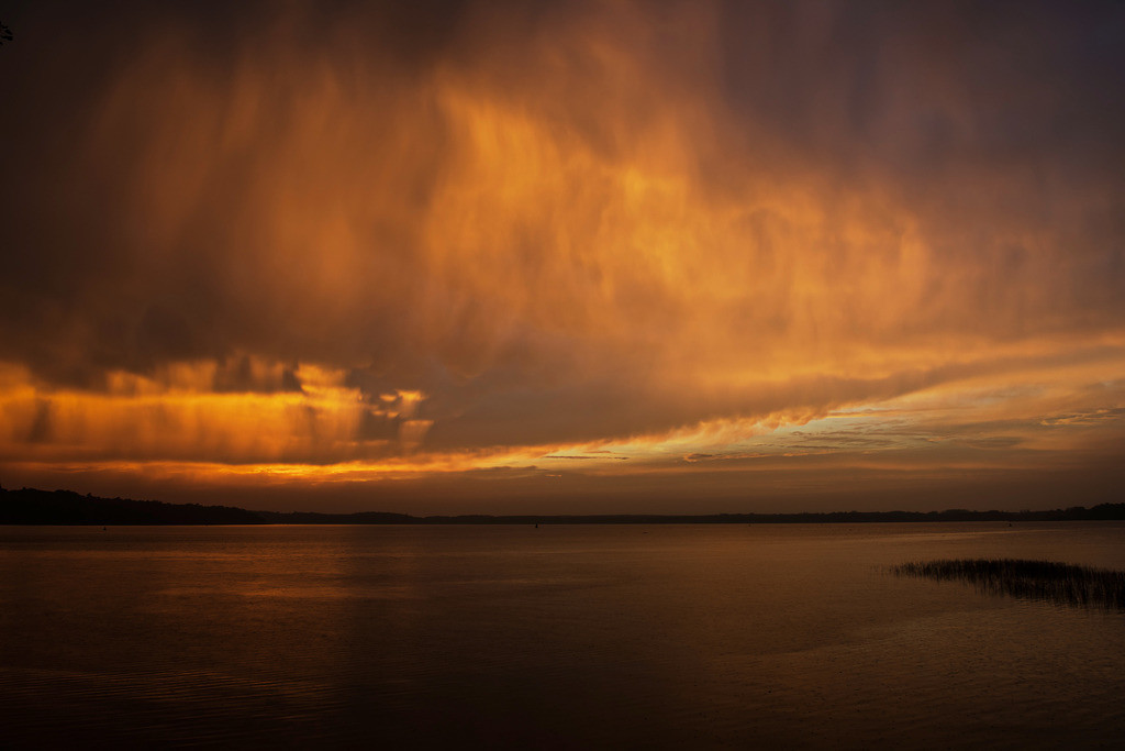 Goldregen | Regenfront von der Abendsonne durchleuchtet, Waren, Müritz