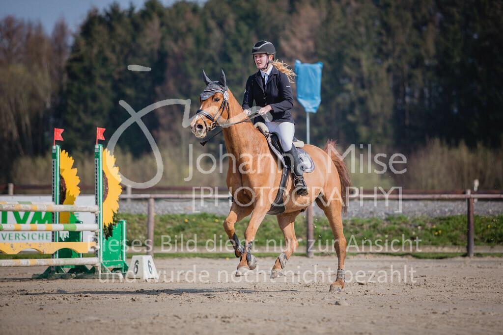190406_Frühlingsfest_SprA-114 | Frühlingsfest der Pferde 2019, von Lützow Herford, A**-Springen, RLP 10 - 32