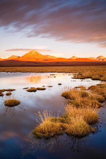 Atacama 010