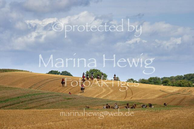Jagd Knoop 217489_Marina Hewig
