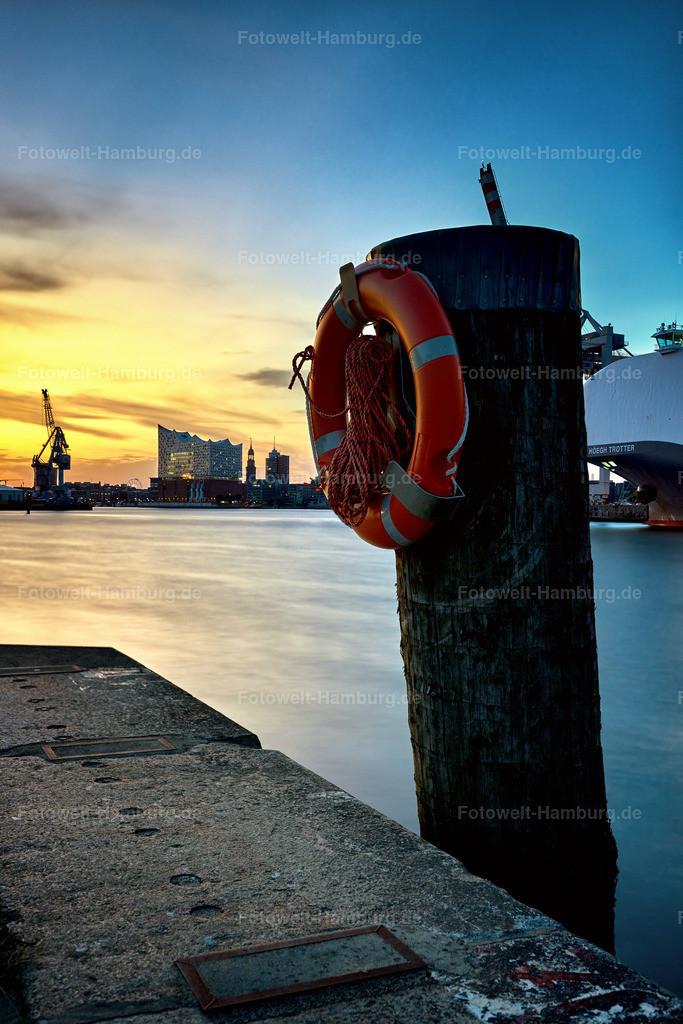 10190803 - Hafenimpression | Blick vom Hansahafen auf die Elbphilharmonie