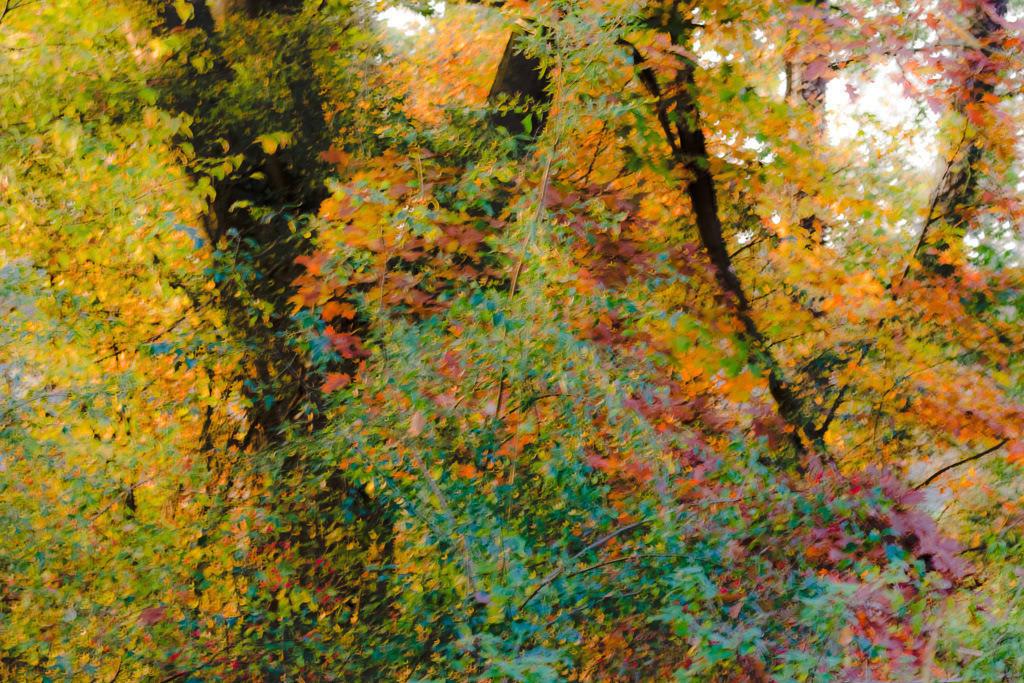 Herbstmalerei