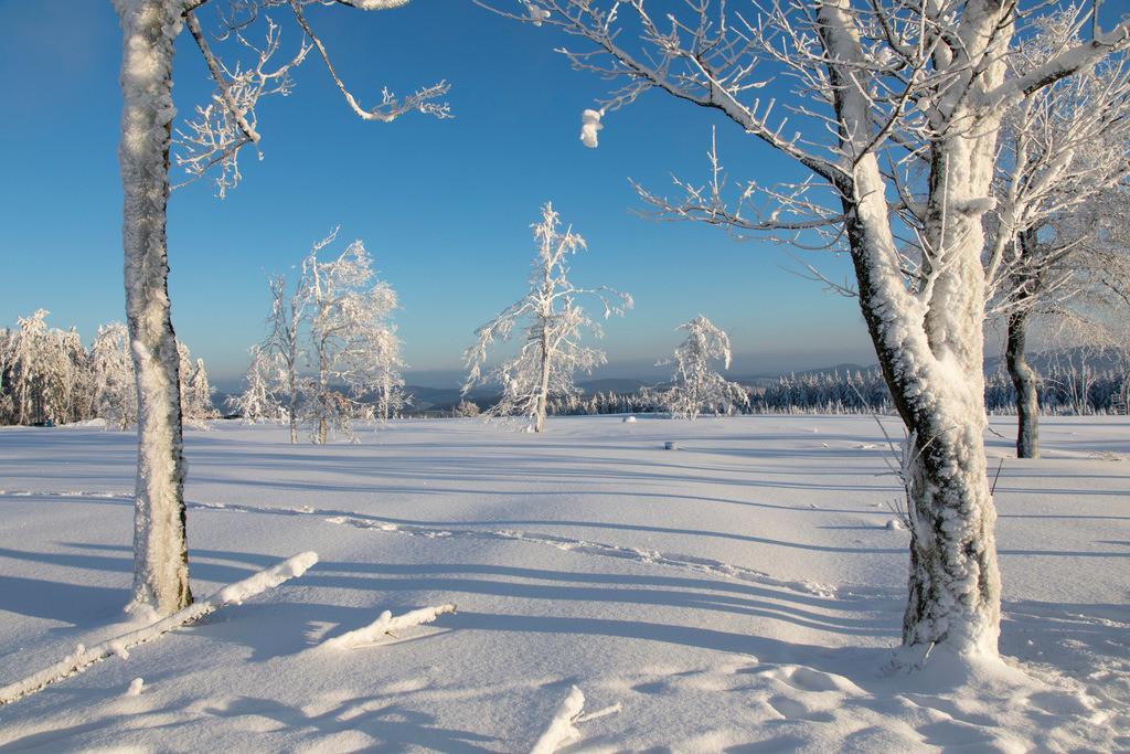 JT-170116-121 | Winter auf dem Kahlen Asten, Sauerland, höchster Berg in NRW, tief verschneite Landschaft
