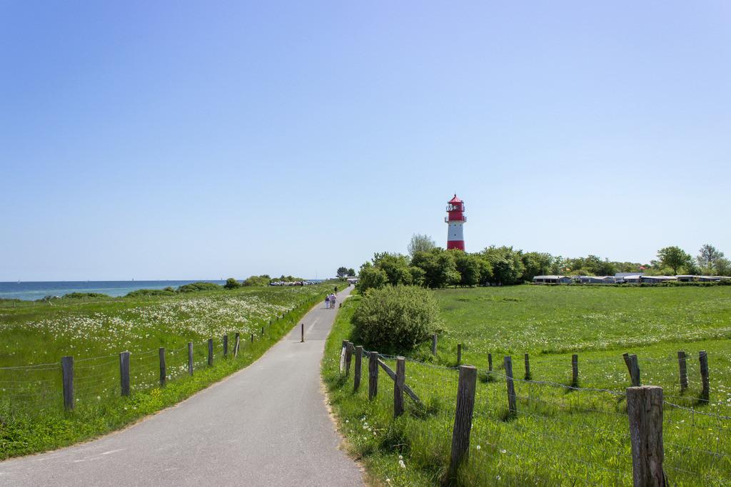 Leuchtturm in Falshöft  | Straße zum Leuchtturm in Falshöft im Frühling