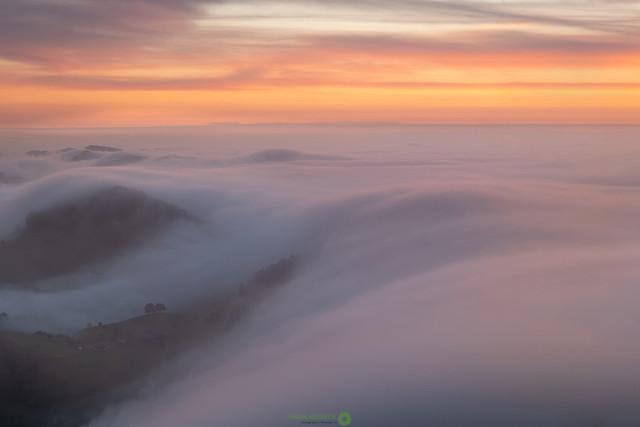 Nebelwelle | Nebelwelle im Herbst