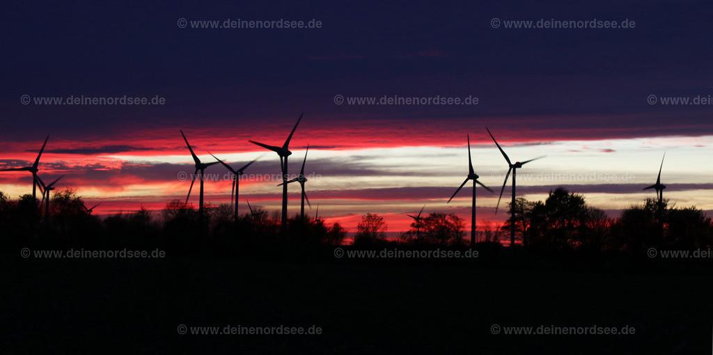 Sonnenuntergang im Koog