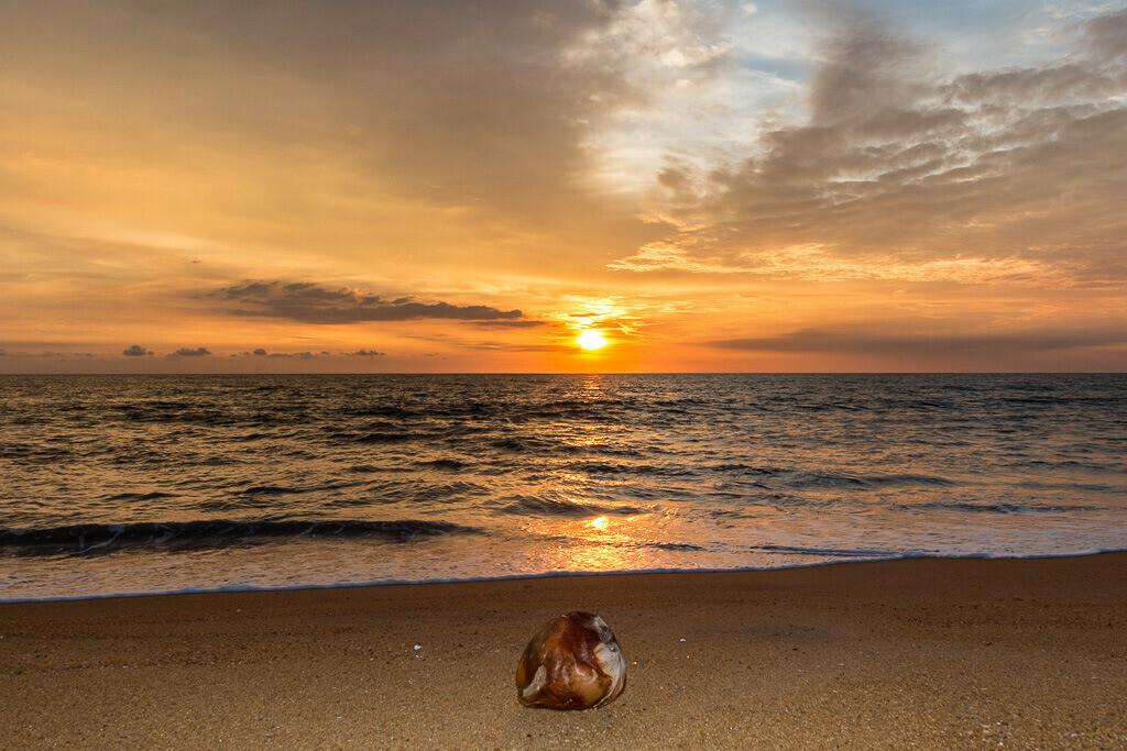 Sonnenuntergang am Meer mit Kokusnuss
