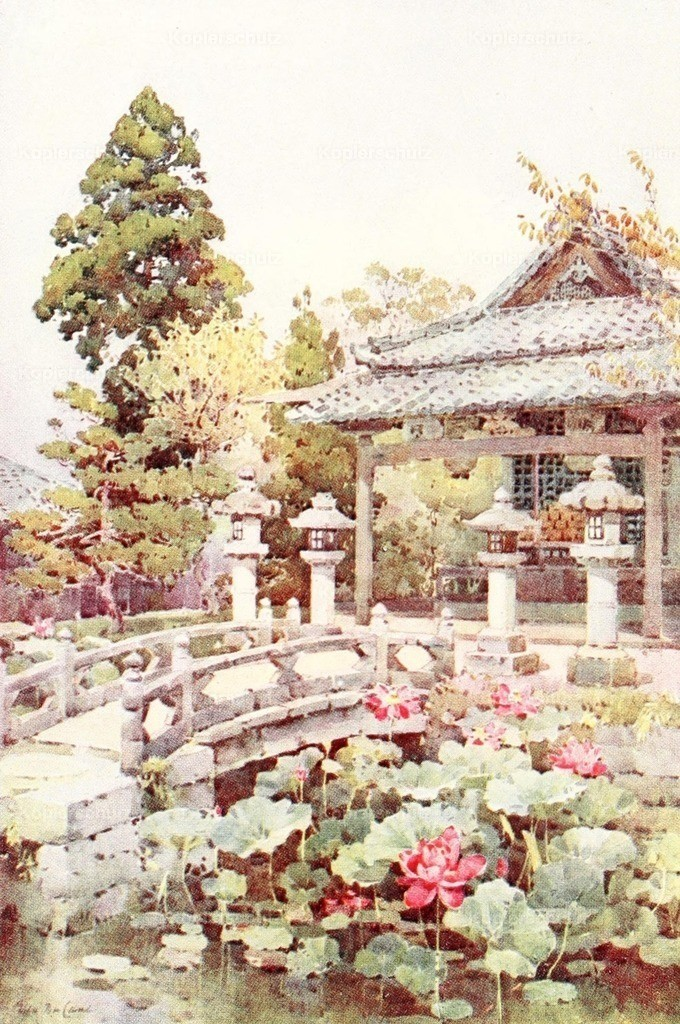 Du Cane_ Ella (1874-1943) - Flowers _ Gardens of Japan 1908 - Lotus at Kyomidzu
