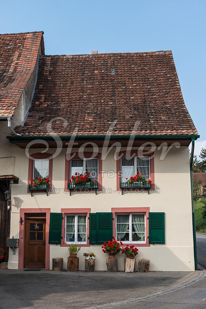 Bauerhaus, Arisdorf (BL) | Bauernhaus mit barocken Fenstern am Ende des Dorfes, Arisdorf im Kanton Baselland.