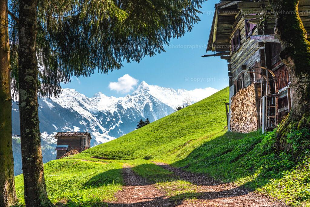 Wandern in Mayrhofen-1