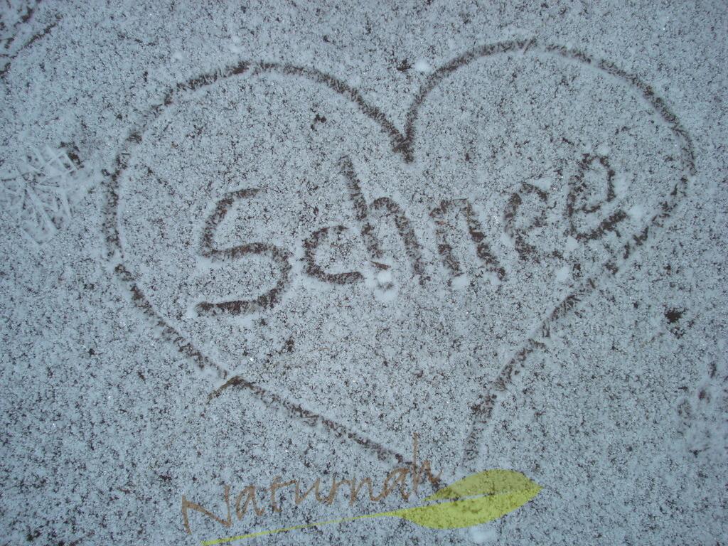 Ein Herz für Schnee