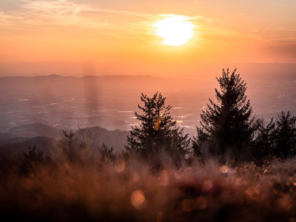 Kandel bei Waldkirch | Traumhafte Abendstimmung am Kandel bei Waldkirch im Schwarzwald