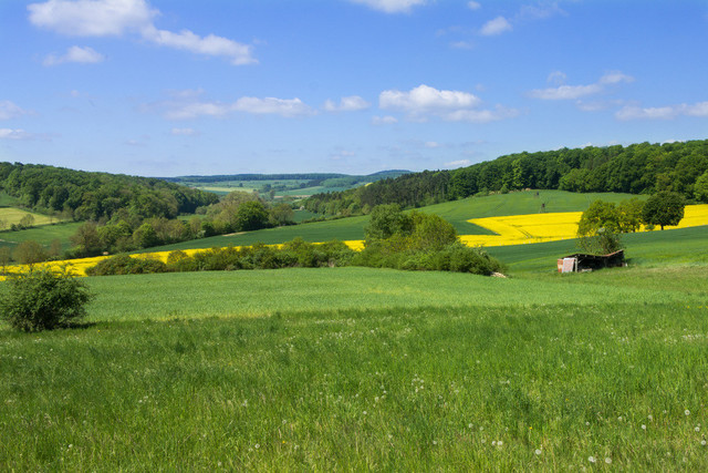 Landschaft mit grüner Wiese, Felder und Wald.  | Landschaft mit weitem Blick ins Land. Grüne Wiesen, blauer Himmel, Felder und Wald.