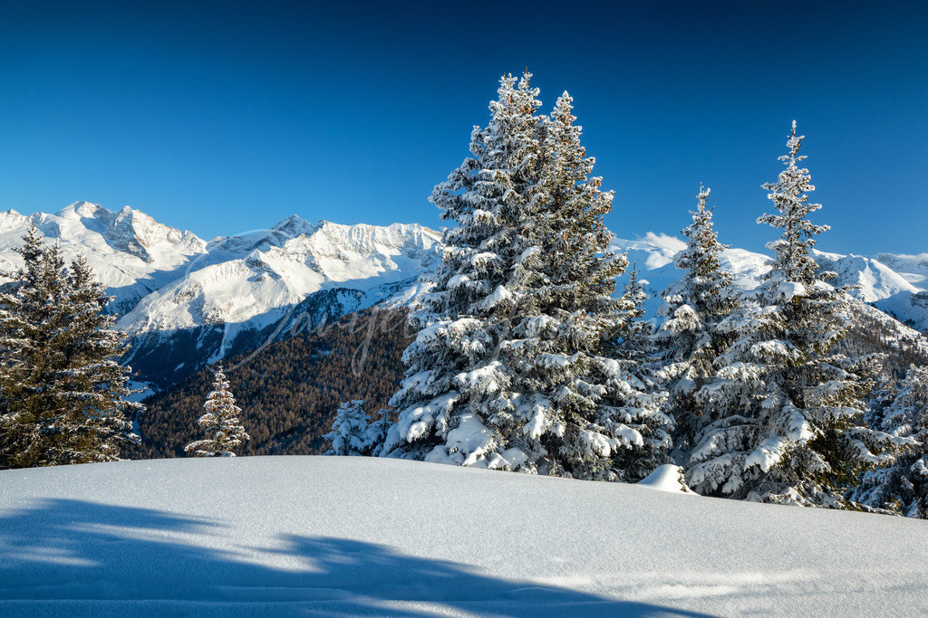 Winter in Tirol | Wunderschöne Schneelandschaften