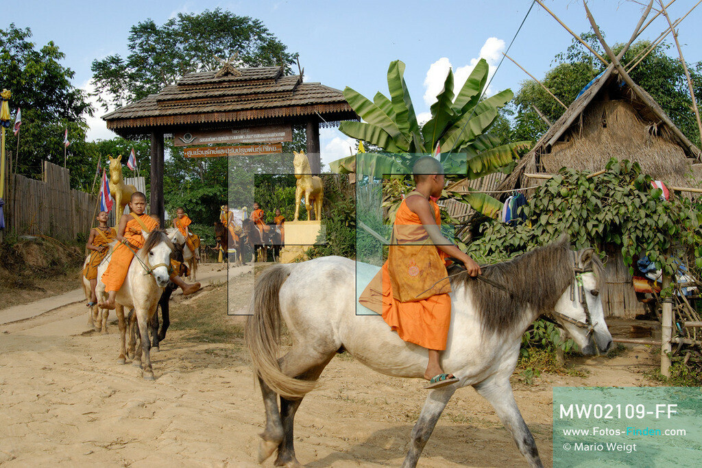 MW02109-FF   Thailand   Goldenes Dreieck   Reportage: Buddhas Ranch im Dschungel   Junge Mönche verlassen das Kloster und sammeln Almosen.  ** Feindaten bitte anfragen bei Mario Weigt Photography, info@asia-stories.com **