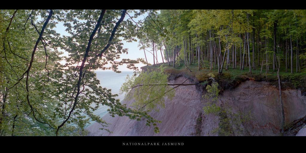 Nationalpark Jasmund | Kreidefelsen mit Buchen im Buchenwald und Nationalpark Jasmund auf Rügen an der Ostsee